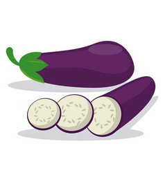 Eggplant raw harvest food vector