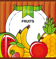 fresh healthy set of fruits vector image