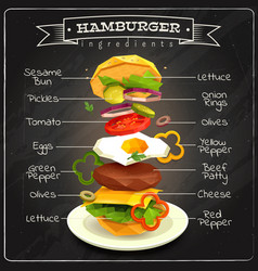 Hamburger ingredients infographics vector