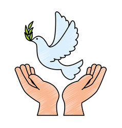 hands human with dove of peace vector image