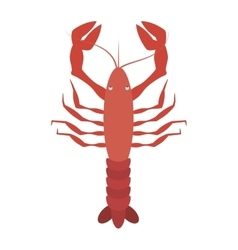 red lobster sealife top view vector image