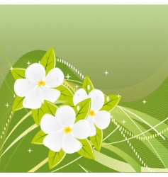 abstract green background with magnolias vector image