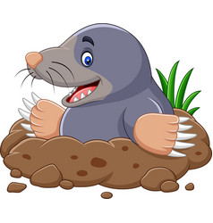cartoon mole come out of the hole vector image