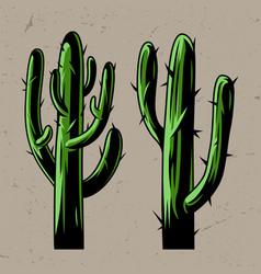 green cactus plants concept vector image