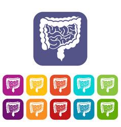Intestines icons set vector