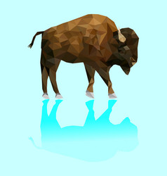 Isolated low poly bison and reflection vector