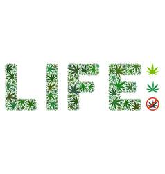 Life label collage of marijuana vector