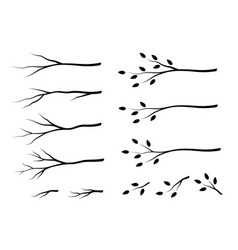 Set isolated tree branches with leaves vector