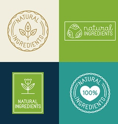 Set of design elements and badges for food and vector