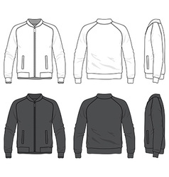 blank bomber jacket with zipper vector image