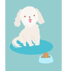 white poodle dog vector image