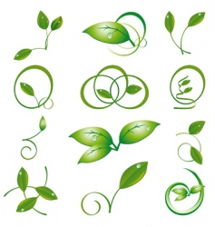 a set of green leaves vector image