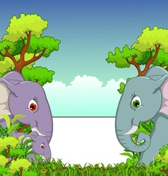 couple elephant cartoon with forest background vector image