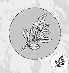 hand drawn holly vector image