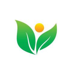leaf eco nature logo vector image