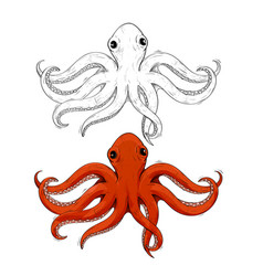 octopus hand drawn sketch vector image