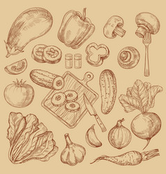 organic fresh vegetables hand drawn sketch vector image