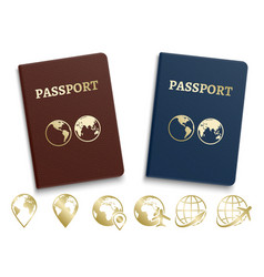 Passports international id and golden navigation vector