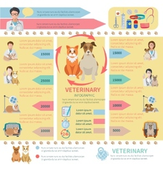 Veterinary Infographics vector