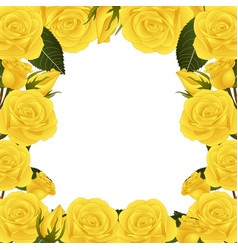 Yellow rose flower border vector