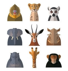Icons of african animals3 vector image