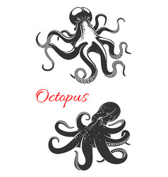 Octopus marine animal icon set for tattoo design vector