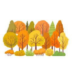 autumn forest trees autumnal garden yellow tree vector image