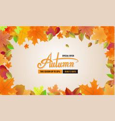 autumn sale background layout autun sale vector image