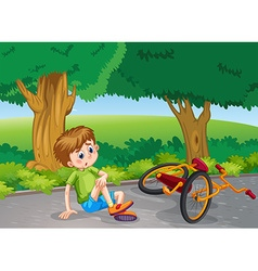 Boy falling down from bike in the park vector image