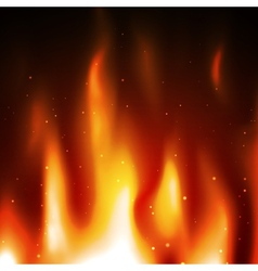 Burn flame fire background vector