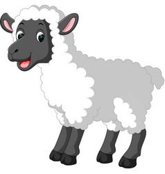 Cute sheep cartoon vector