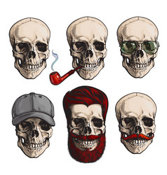 Human skull bones with sunglasses beard vector