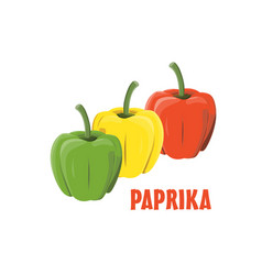Logo paprika farm design vector