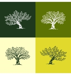 olive tree silhouette icons set vector image