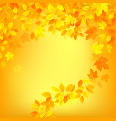 autumn decoration color background with yellow vector image
