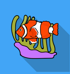 Clownfish and anemone icon in flat style isolated vector