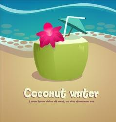 Coconut vector