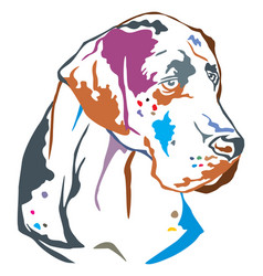 colorful decorative portrait of great dane vector image