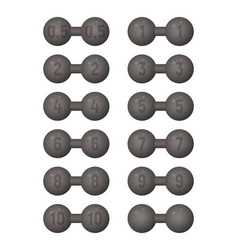 dumbbells of different weight vector image