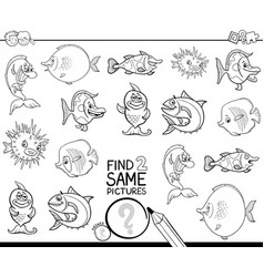 Find two same fish characters coloring book vector