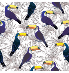 Seamless tropical pattern with toucan summer vector