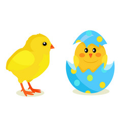 chicken and newborn chick hatch from shell vector image vector image