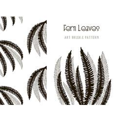 fern leaves design art brush and pattern vector image vector image