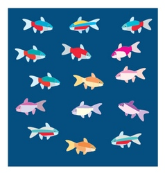 Tetra fish vector