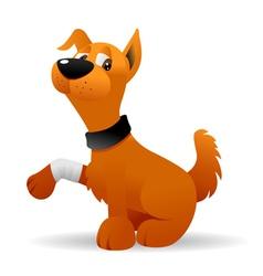 injured dog vector image