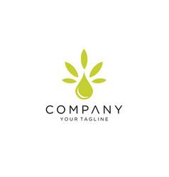 Cbd cannabis marijuana cannabis essence oil drop vector