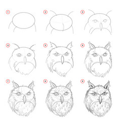 creation step step pencil drawing page shows vector image