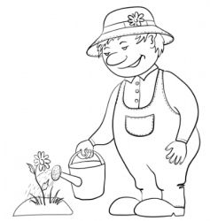 gardener waters a flower contour vector image