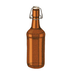 hand drawn beer bottle vector image