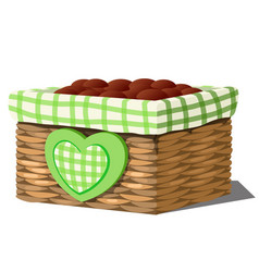 stylish flower pot in the form of a wicker basket vector image